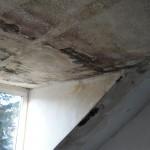 verdeckter-wasserschaden-dachgeschos-leverkusen